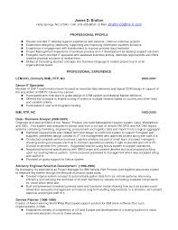 Application Support Analyst Resume Sample by Resume Example It Security Careerperfectcom Information