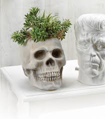 skull planter do it yourself skull flower pot joann