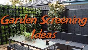 Garden Screening Ideas 10 Garden Screening Ideas To Make Your Garden A Paradise
