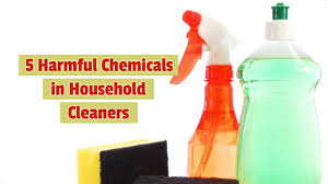 Toxicity Of Household Products by 5 Harmful Chemicals In Household Cleaners Youtube