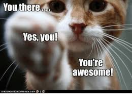 You Are Awesome Meme - you there yes you you re awesome lga nh as chee2 burgercom桽完 e