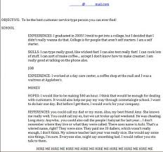 the 25 funniest job resumes of all time worldwideinterweb