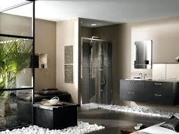 spa like bathroom designs modern spa like bathrooms modern spa bathrooms quitepretty top