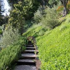Steep Hill Backyard Ideas 42 Best Hill Lanscaping Ideas Images On Pinterest Landscaping