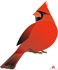 free cardinal clipart pictures clipartix