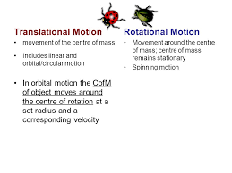 the ladybugs are undergoing translational motion the disc is