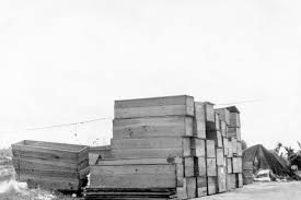 coffins stacked along the bank of a canal after the hurricane of