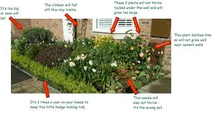 how to get a low maintenance border in your garden u2013 plantplots