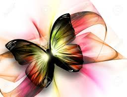 beautiful butterfly on a light background stock photo