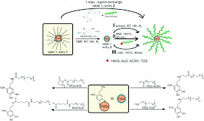 melt grafting for the synthesis of core u2013shell nanoparticles with