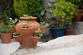 clay pots for plants best 25 terracotta pots ideas on pinterest