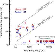 neural representation of concurrent harmonic sounds in monkey
