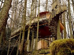Treehouse Living Gwdy Hw Canopy U0026 Stars