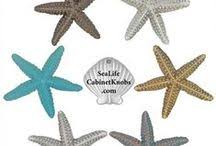 Beach Themed Cabinet Knobs by Sea Life Cabinet Knobs Slcknobs On Pinterest