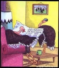 turkey jokes nutsrok