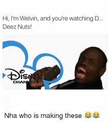 These Nuts Meme - hi i m welvin and you re watching d deez nuts dis el cha