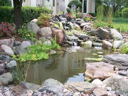 small backyard ponds u2014 home design lover best backyard ponds