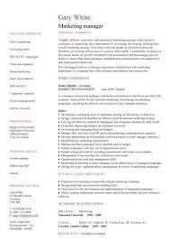 marketing resume templates marketing resume template vasgroup co