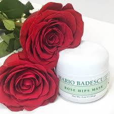valentine u0027s day gift ideas for her mario badescu skin care blog