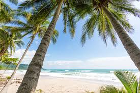 santa teresa and mal país travel guide surfing hotels costa