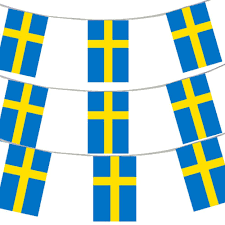 33ft 10 meters swedish flag bunting sweden party euro decoration