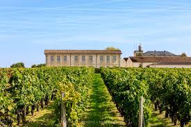 learn about st julien bordeaux vendange to château gruaud larose grand cru julien