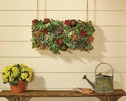 vertical succulent garden dih workshop her tool belt