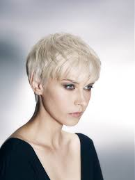 regis bob hairstyles regis short blonde straight hair styles 22117 hair ideas