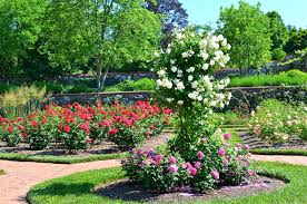 the worlds five most beautiful gardens all that is rose garden in
