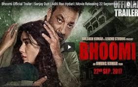bollywood 2017 movie budget u0026 profit box office collection u0026 hit