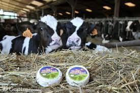 bienvenue nièvre chambre d agriculture de la nievre ferme de neuftables luthenay uxeloup nièvre 58 bienvenue à