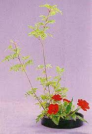 Flowers In Japanese Culture - japanese culture arts ikebana flower arrangement