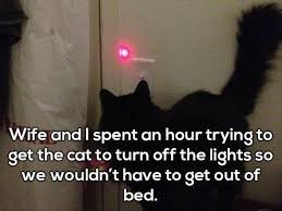 Get Out Of Bed Meme 34 Funny Memes And Pictures Of The Day Funny