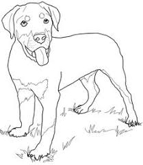 dog and puppy coloring pages dog color pages printable small dog with a big bone color page