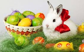 easter bunny enotes the rabbit of easter he brings of the chocolate