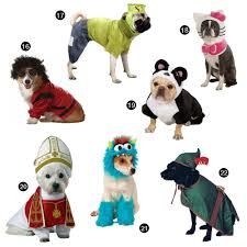 halloween hounds 22 adorable dog costumes for 2014 dog milk