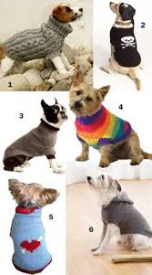 a free easy crochet dog sweater pattern for a small dog doll