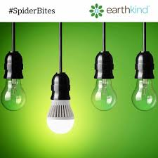 get rid of spiders from the house sneaky tips that keep spiders