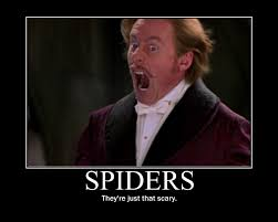 Afraid Of Spiders Meme - spiders are not evil funny blog minecraft blog