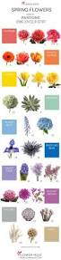 List Of Flowers by 21 Best Flower Colors Images On Pinterest Flower Colors Flower