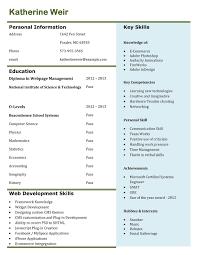simple creative resumes format creative resume format