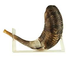 shofar stands large ram s horn lucite shofar stand ajudaica