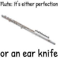 Flute Player Meme - memes for obsessed flute players home facebook