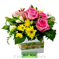 buy flowers online flowers online gold coast mothers day delivery botanique