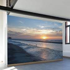 paul moore s sunset seagull beach mural from walls need love mural wall decal full size full size