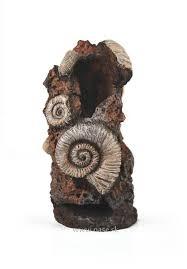 oase biorb ornament ancient conch oase sk