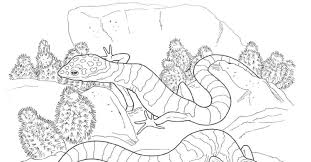 scorching beauty of deserts 17 deserts coloring pages free