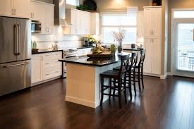 dark cabinets with dark hardwood floors pictures extraordinary