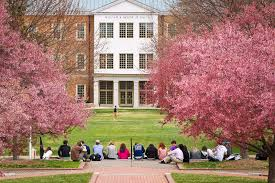 Cherry Blossom Facts by Quick Facts Undergraduate Admissions Wake Forest University