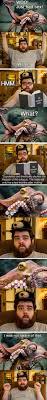 best 25 octopus lifespan ideas on pinterest steampunk watch